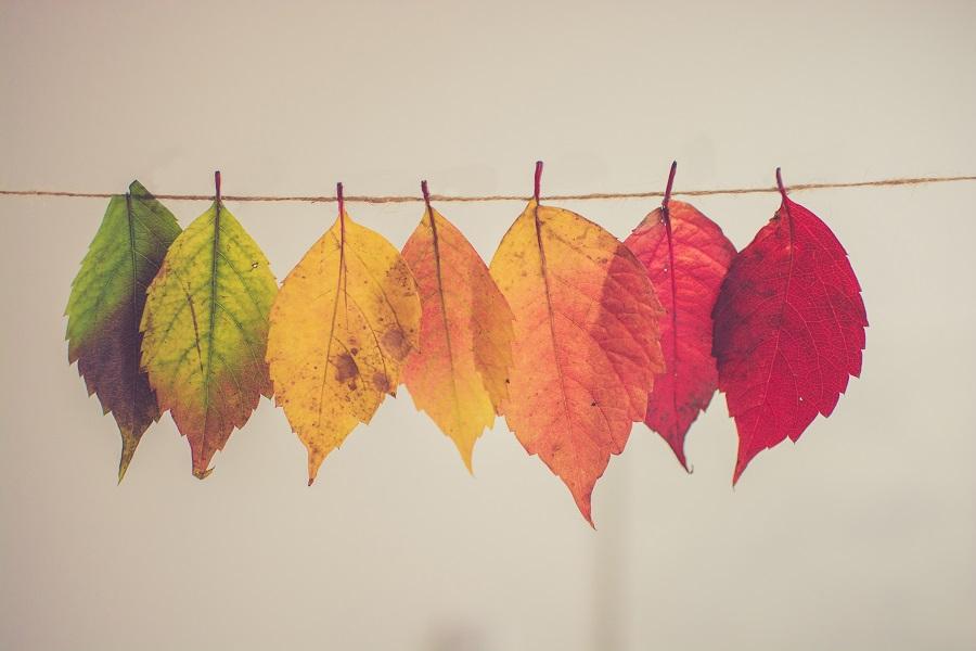 Rõivaste hooldus - värvide ja mustrite eluea pikendamine